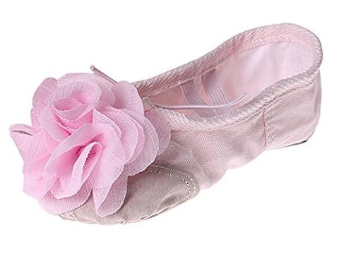 Smarstar Chaussures de Ballet Ballerines Chaussons en Toile avec une