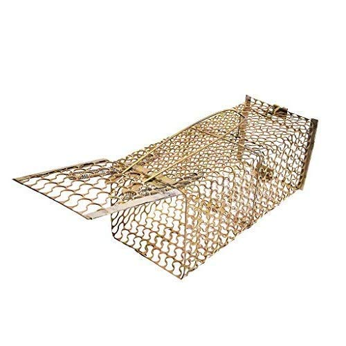 Ambe Jee Rat, Rodent, Mouse Trap/Catcher Iron Big Size - Ultimate Solution to All Rat Problems