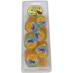 Namiba Terra 70117 Vorteilspack, 12 Stück Jungle Shop Beetle Vitamin-Frucht Jelly für Insekten, 16 g pro Stück
