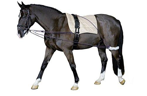 Longierhilfe Bodenarbeit Ausbildung Pony und Kleinpferde| Longiersystem Warmblut | Longier-und Trainingssystem | Longieren Hilfszügel
