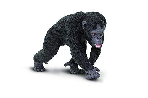 Safari WS WL Schimpanse -