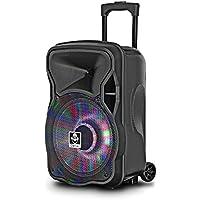 iDance Groove 420Trolley altavoz Speaker con disco LED Iluminación 500W, función de karaoke batería con micrófono inalámbrico