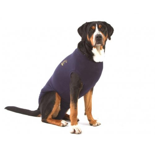 Preisvergleich Produktbild Medical Pet Shirt Hund - Blau M Plus