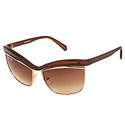 Danny Daze Square Sunglass (Brown) (D-2853-C2)