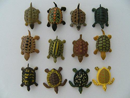 Schildkröten, 12erSet, ca. 4 cm, Schildkröte Landschildkröten Hartgummi, Spielzeug Tiere