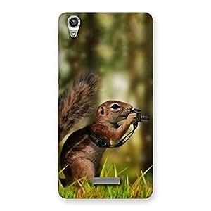 Enticing Squirrel Multicolor Back Case Cover for Lava-Pixel-V1