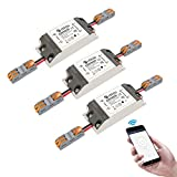 Smart Wifi Switches Wireless Relay Remote Control eMylo Light Switch Module Smart Home Automation Timer di uscita Compatibile con Alexa, Google Home Via iphone Android 3 pacchetto