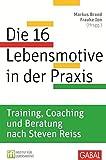 Die 16 Lebensmotive in der Praxis: Training, Coaching und Beratung nach Steven Reiss