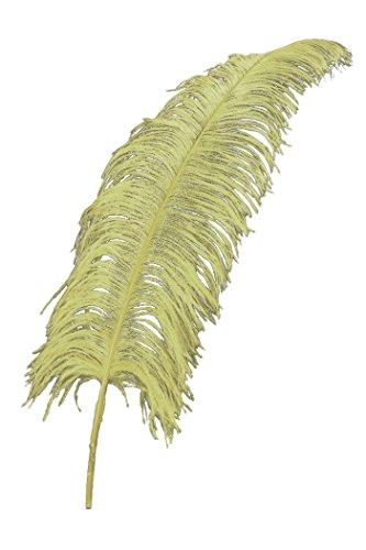 Straußenfedern ca. 30 cm lang in beige