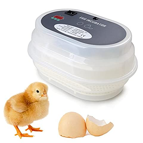 ColorMax Hot Sale! Fully Automatic Digital Poultry Hatch 12 Eggs Egg Incubator For Hatching Chicken Duck Goose Birds-UK