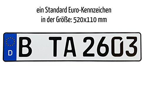 Preisvergleich Produktbild Euro KFZ-Kennzeichen 520x110