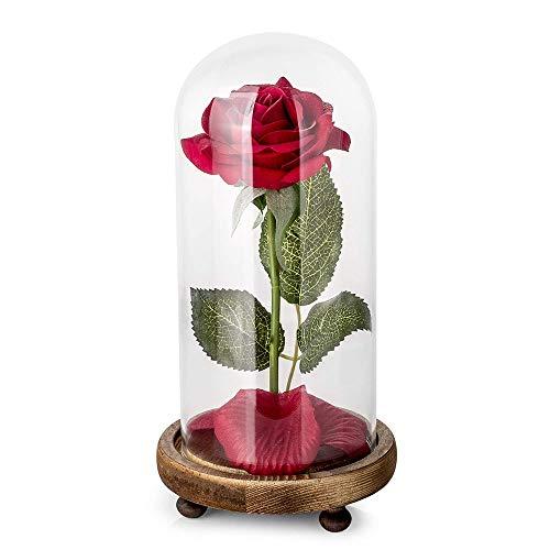 ALLOMN Fleur pour Toujours Red Silk Rose LED Light avec Pétales Tombés dans Un Dôme en Verre sur Socle en Bois, Lampe de Bureau USB avec Télécommande