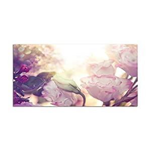 Paul Sinus Art 120x80cm – WANDBILD Blume Rose Blüte Romantik – Leinwandbild auf Keilrahmen modern stilvoll – Bilder und…