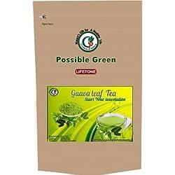 Lifetone Ceylon Guava Leaf Tea, Sri Lanka Guave Blatt Tee, 20 Tee bags, 40 gramm Tee