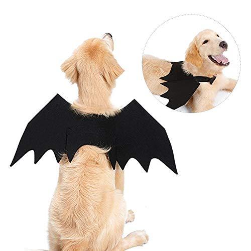 Oddity Halloween-Kostüm für Hunde und Katzen, Fledermaus mit Flügeln (Machen Fledermaus Flügel Kostüm)