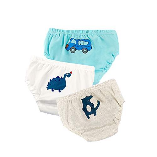 Baywell Kleines Mädchen Junge Pantys Unterhosen Baby Mädchen Baumwolle Unterwäsche Höschen Fit Alter 1-6, Kleinkind Schlüpfer Unterwäsche Boxershorts Slips 3 Pack