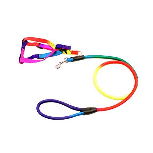 UKCOCO Einstellbare Brustgurt und Dauerhaft Leine für Haustier Hund Welpen Katze Kätzchen Hase (Regenbogen Farbe) -