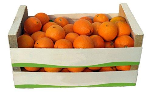 ARISTOS frische Orangen | Apfelsinen | ungewachst & unbehandelt | auch als Saftorangen | Schale zum Kochen Backen Marmelade geeignet | griechische Lane Late Orangen (12 kg) Ernte: 24.11.2018