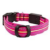 Hahaiyu LED Dog Collar reflektierende Streifen wasserdicht Multi-Funktion Ladung Licht Kragen Puppy Dog Supplies (PINK)