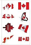 Newin Star Newin Star Temporäre Tattoos, WM Tattoos Fußball Fanartikel Wasserdichter Gesicht Körper Aufkleber für 2018 WM (Kanada)