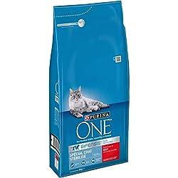 PURINA ONE Spécial Chat Stérilisé Au Bœuf et au Blé 6 KG - Croquettes pour chat adulte