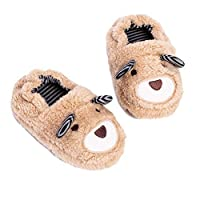 Haizhe Toddler Boys Girls Home Slipper Cartoon Animal Slippers Warm Cotton Unisex Kids Winter Non-Slip House Slipper