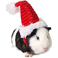 Hamster Hat Rat Hat Fashionable Cat Christmas Hat for Small Pet Santa Hat