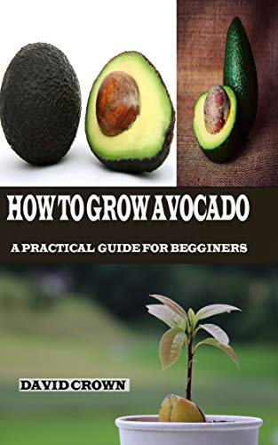 How to Grow Avocado: A Practical Guide for Beginners (English Edition)