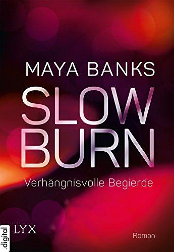 Slow Burn - Verhängnisvolle Begierde (Slow-Burn-Reihe 2)