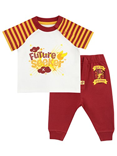 Harry Potter Baby Boys Gryffindor Top & Joggers Set Ages 0 To 18 Months