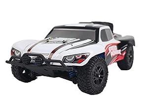 ThomaxX T9301Radio Gra pescado bestuurbare Auto Schaal 1: 18. X de Desert Speed Pioneer Ready to Run (kompleet met Accu en carga voor Auto)
