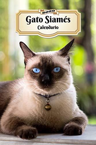 2020 Gato Siamés Calendario: 107 Páginas | Tamaño A5 | Planificador Semanal | 12 Meses | 1 Semana en 2 Páginas | Agenda Semana Vista | Tapa Blanda | Gato