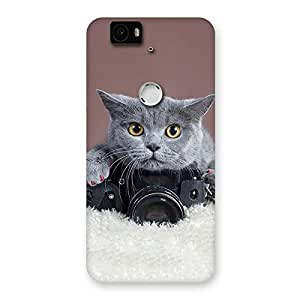 Gorgeous Kitty Photographer Multicolor Back Case Cover for Google Nexus-6P