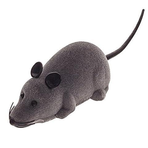 Smartfox RC Fernbedienung drahtlose ferngesteuerte Spielzeug Spielmaus Maus Ratte für Haustier Katze Hund in grau