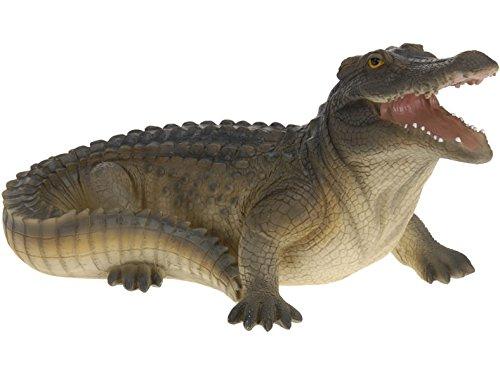 Jardin Crocodile 30 cm