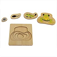 Wumudidi Montessori frog multi-layer growth puzzle, wooden natural material preschool children baby toys(7inch*7inch)