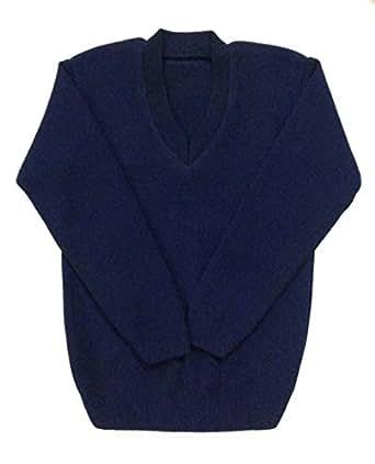 Ashish Oswal Navy blue school uniform v-neck sweater (2-3 Years)