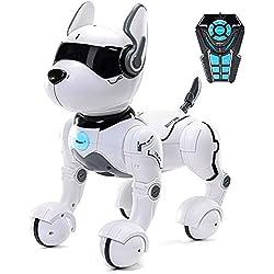 Jouet Robot télécommandé pour Chien, Robots pour Enfants, Rc Toys Robot pour Enfants 2,3,4,5 Ans et Plus, Robot et Jouet Dansant, Imiter des Animaux, Mini Animal - Chien ne Parle Que l'anglais