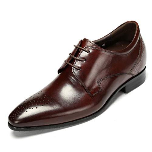 Zxcer Oxford Brogue Schuhe Herren - Herren Plaid Schwarz Leder Abendschuhe, Perforierte Lace Up Freizeitschuhe (Farbe : Braun, Größe : 43 EU) - Perforierte Leder-plattform