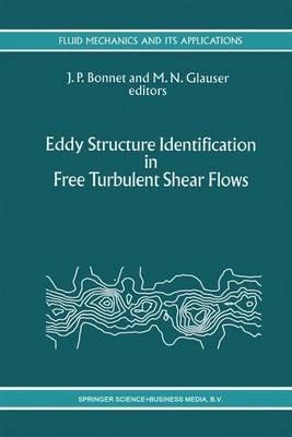[(Eddy Structure Identification in Free Turbulent Shear Flows : Selected Papers from the IUTAM Symposium Entitled: