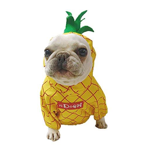 Für Kostüm Hunde Ananas - Smniao Hundebekleidung Haustier Kostüm Klein Hund Warm Ananas Hoodies für Chihuahua Bulldogge Haustier Welpen T-Shirt Kleid Rock (S, Gelb)