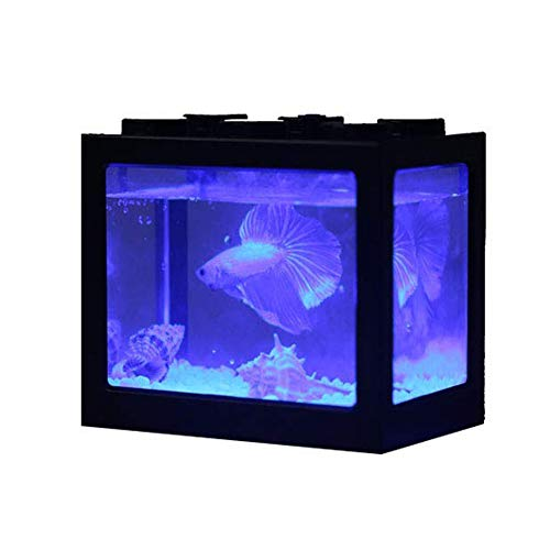 Ecological Aquarium Box Acuario De Sobremesa Mini