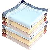 Royal Quality Stofftaschentücher 6 Stück ca.40x40cm reine Baumwolle Herrentaschentücher Jerry