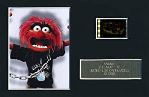 The Muppet Show ANIMAL Limited Edition Film Cell m