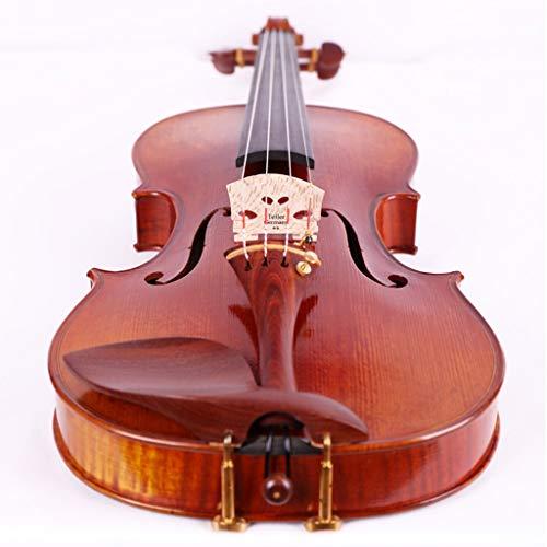 Violini Strumenti a Corda Abete Prestazioni Professionali Acero Strumento a Corde Parti Ebano Accessorio Completo (Color : 4/4)