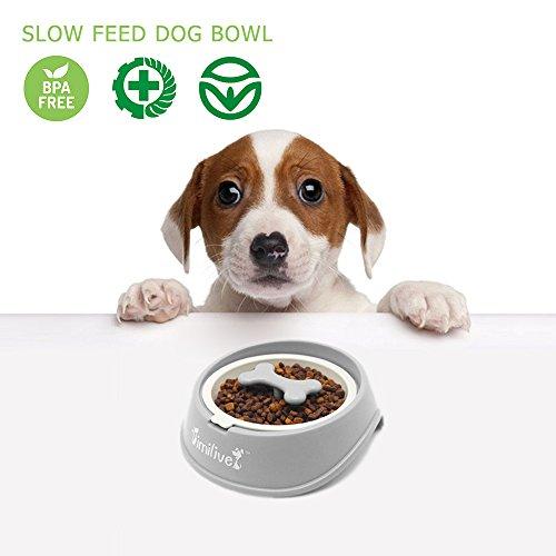 Hundenapf Edelstahl Langsam Essen Fressnapf, Spaß Interaktive Feeder Schüssel und Wasser Trinken Bowl , Grau (Trinken Wasser Hund Schüssel Langsam)