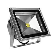 G.W.S ® classique Argent Enceinte extérieure IP65Imperméable SMD puce LED Projecteur, lumière de sécurité d'économie d'énergie Bianco Caldo (30W)