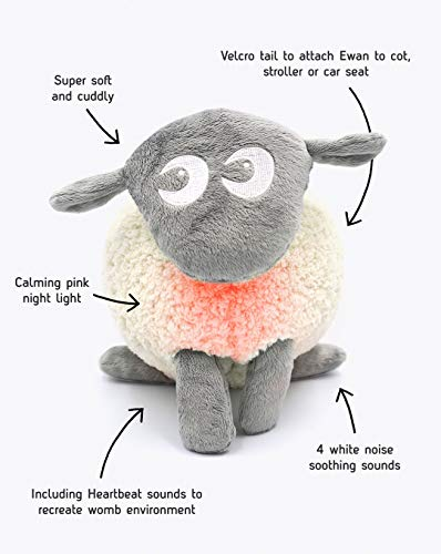 Easidream – Ewan the dream sheep / das Traumschaf – grau - 3