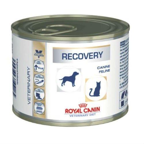 ROYAL CANIN Veterinary Diet Recovery Nahrung für Hunde/Katzen -