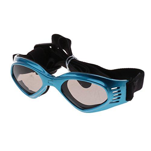 Baoblaze Hundebrille Hunde Sonnenbrille UV Augenschutzbrille Outdoor Schutzbrille für Kleine & Mittlere Hunde - Blau